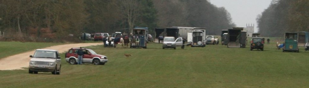 Three Counties Hunt Sabs