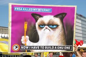 grumpy_cat_builds_a_gnu_internet