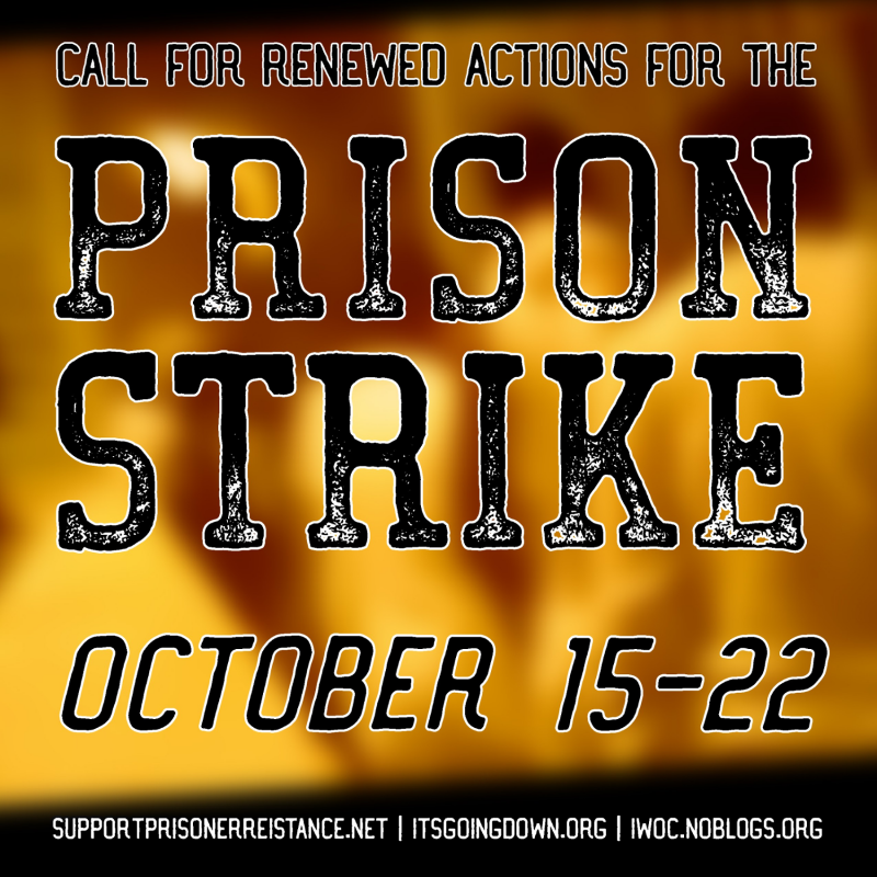soli action USA strike october 2016