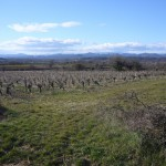 Plaine de Navacelles avec montagnes au fond
