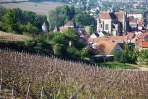 Essômes-sur-Marne@Marie-Paule Huot, CC-By, Wikimedia Commons