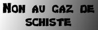Logo Non au gaz de schiste 200px@libre fan, CC-SA