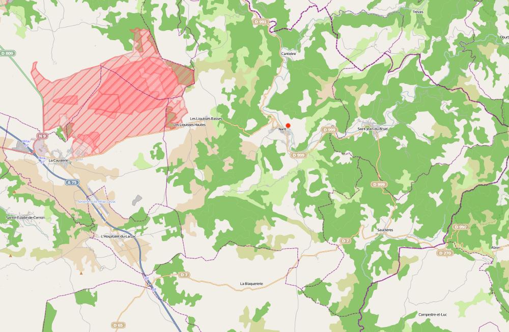 Carte de Nant - Aveyron