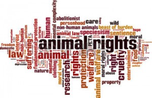 an introduction to utilitarian defense of animal liberation Buy animal liberation by (now with a new introduction by this is the predictable product of hard utilitarianism he says that the only defense of.
