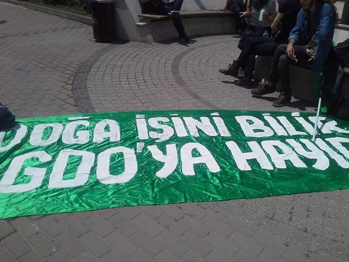 mam istanbul