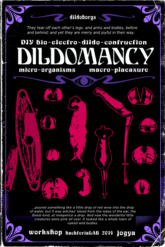 [Indopech] – SeXology >> Dildomancy