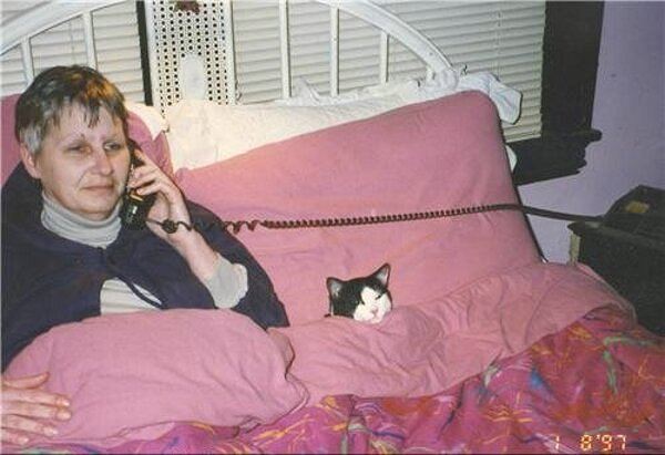 woman talking on the phone with a cat