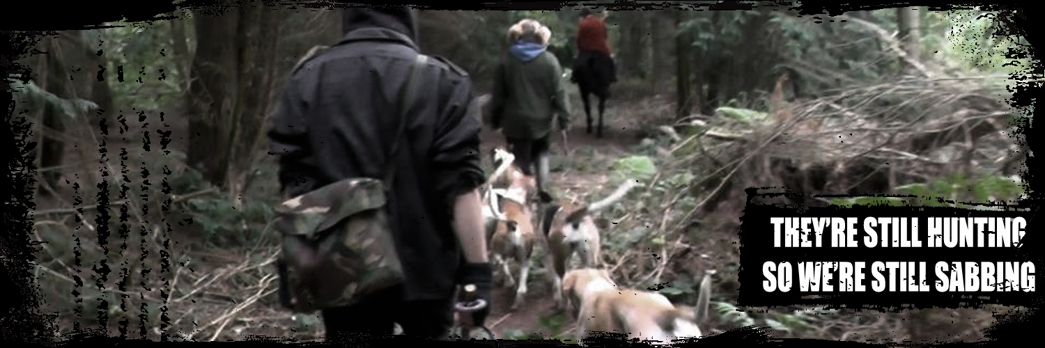 West Midlands Hunt Saboteurs